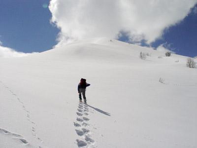 Raquettes dans la neige