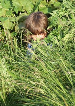 Cachée dans l'herbe