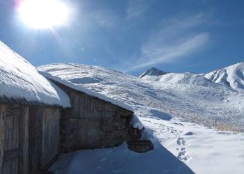 Alpage dans la neige